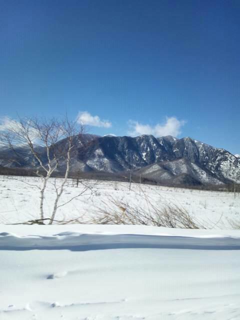 雪の戦場が原を車窓から